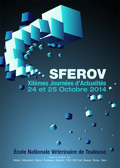 Congres_Sferov_2014_flyer